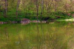 Lago forest Fotografía de archivo