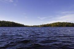 Lago forest Fotografie Stock