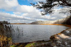 Lago forest Fotografie Stock Libere da Diritti