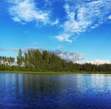 Lago forest Fotos de Stock Royalty Free