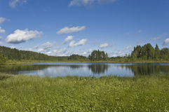 Lago forest com reflexões das nuvens Fotografia de Stock Royalty Free