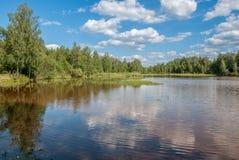 Lago forest con la riflessione degli alberi e cielo con le nuvole Fotografia Stock Libera da Diritti