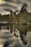 Lago forest con reflexiones. Fotografía de archivo libre de regalías