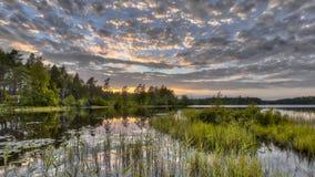 Lago forest di Nordvattnet nella riserva naturale di Hokensas Fotografia Stock Libera da Diritti