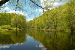 Lago forest, em algum lugar em Rússia fotos de stock