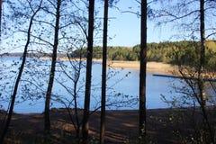 Lago forest em um dia de ver?o ensolarado Tempo calmo calmo fotos de stock