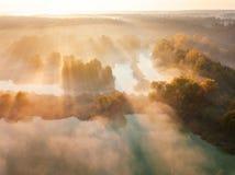Lago forest en la niebla de la mañana, en los rayos del sol del amanecer Cantidad del abejón fotografía de archivo libre de regalías