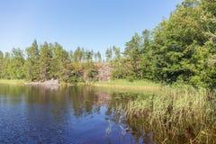 Lago forest en un día de verano soleado Fotografía de archivo