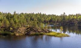 Lago forest en verano imagenes de archivo