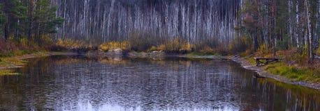 Lago forest a finales del otoño Imagenes de archivo