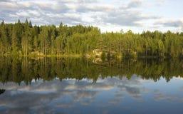 Lago forest na noite do dia de verão Foto de Stock