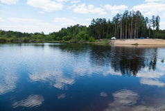 Lago forest na primavera Imagens de Stock