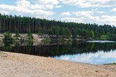 Lago forest na primavera Imagem de Stock Royalty Free