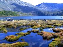 Lago forest nas montanhas. Fotografia de Stock Royalty Free