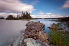 Lago forest nel parco provinciale del Algonquin, Ontario, Canada fotografia stock libera da diritti