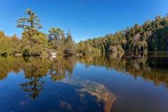 Lago forest no parque provincial do Algonquin, Ontário, Canadá Foto de Stock Royalty Free