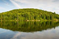 Lago forest sob o céu nebuloso azul Fotos de Stock Royalty Free