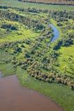 Lago forest, visión superior Foto de archivo