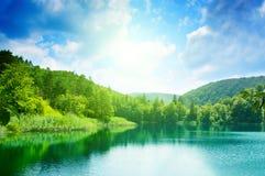Lago in foresta immagine stock