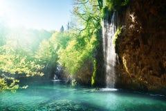 Lago in foresta, Croazia fotografia stock libera da diritti