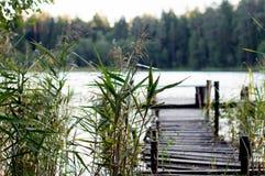 Lago in foresta, Polonia, Masuria, podlasie Fotografie Stock Libere da Diritti