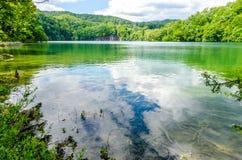 Lago in foresta profonda Fotografia Stock Libera da Diritti