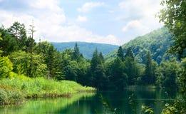 Lago in foresta profonda immagine stock