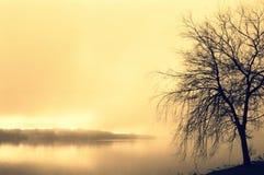 Lago in foschia di mattina a Søøndersø Immagini Stock