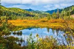Lago fra i cespugli gialli e le montagne lontane immagini stock