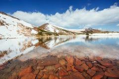 Lago fra le montagne Paesaggio della sorgente carpathians l'ucraina Immagine Stock