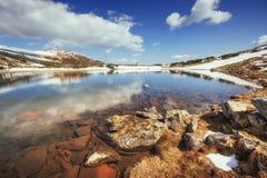 Lago fra le montagne Paesaggio della sorgente carpathians l'ucraina Fotografia Stock