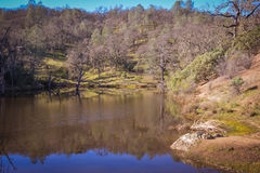 Lago frog al parco di stato di Henry W Coe vicino a Morgan Hill CA Immagine Stock
