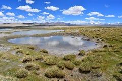 Lago fuertemente salino cerca del pueblo de Yakra en Tíbet fotos de archivo libres de regalías