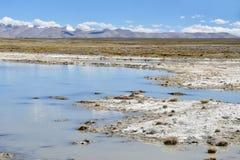 Lago fuertemente salino cerca del pueblo de Yakra en Tíbet foto de archivo