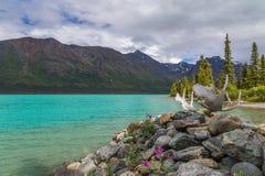 Lago gêmeo superior, chifres no primeiro plano fotos de stock