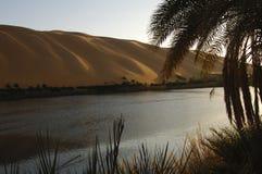 Lago Gabron Libia Immagine Stock