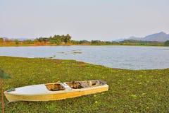 Lago garden Fotografia de Stock Royalty Free