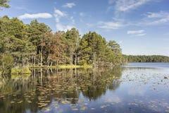 Lago Garten en colores del otoño, Escocia Fotos de archivo libres de regalías
