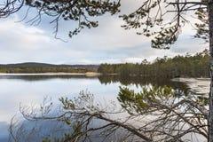 Lago Garten en el parque nacional de Cairngorms Fotos de archivo libres de regalías