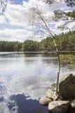 Lago Garten en el parque nacional de Cairngorms Imagenes de archivo