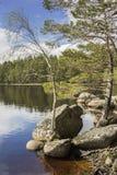 Lago Garten en el parque nacional de Cairngorms Foto de archivo
