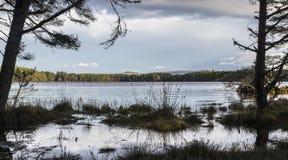 Lago Garten en el parque nacional de Cairngorms Imágenes de archivo libres de regalías