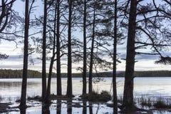 Lago Garten en el parque nacional de Cairngorms de Escocia Foto de archivo libre de regalías