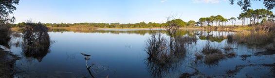 Lago Gator - parque do St. Andrews imagens de stock royalty free