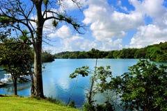 Lago Gatun Immagini Stock