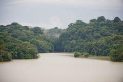 Lago Gatun en Panamá Imagen de archivo