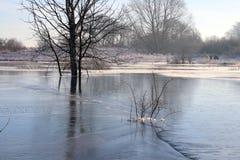 Lago gelado com testes padrões agradáveis Imagens de Stock