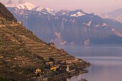 Lago Genebra Foto de Stock Royalty Free