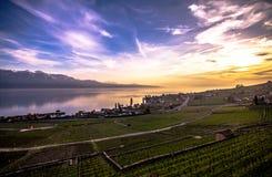 Lago Genebra Fotos de Stock