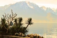 Lago geneva e le alpi, Montreaux Fotografie Stock
